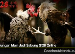 Keuntungan Main Judi Sabung S128 Online