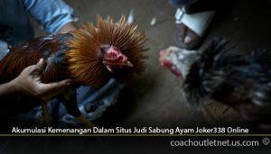 Akumulasi-Kemenangan-Dalam-Situs-Judi-Sabung-Ayam-Joker338-Online